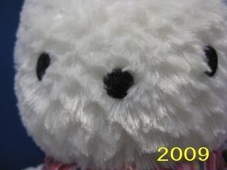 2009okaimono2