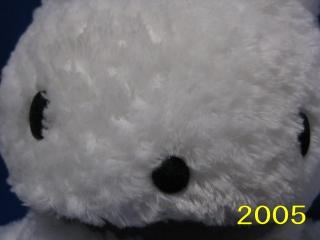 2009okaimono5
